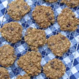 Zucchini Chocolate Chip Breakfast Cookies