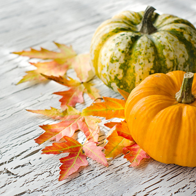 Weekly Sweet Spot: Thanksgiving Sweet Swap!
