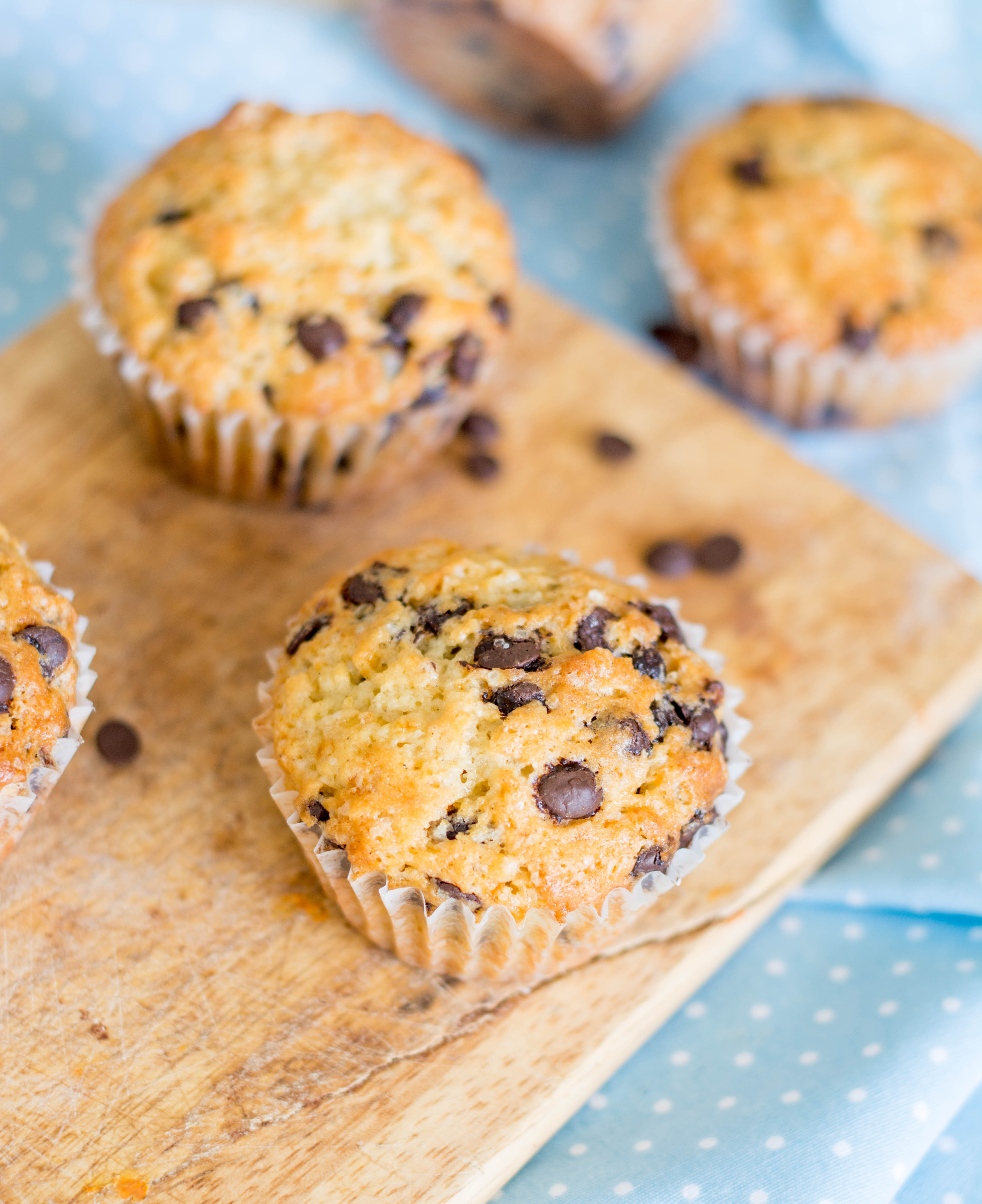 how to make chocolate chocolate chip muffins