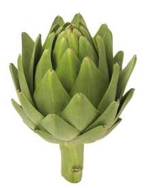 artichoke-heart