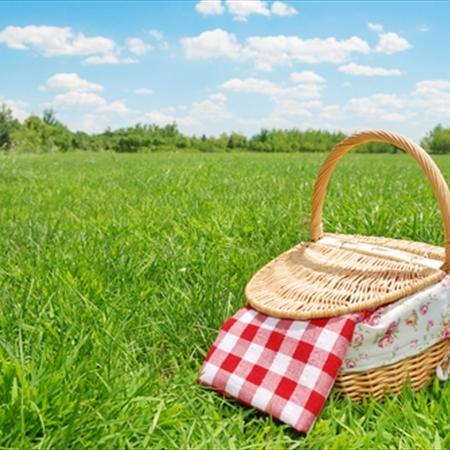 Tips for Planning a Perfect Picnic
