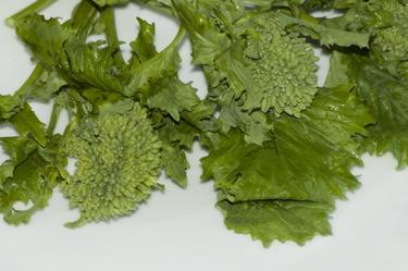 broccoli-rabe