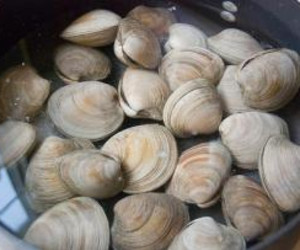 how to clean frozen clams