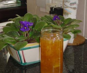 English Orange Marmalade